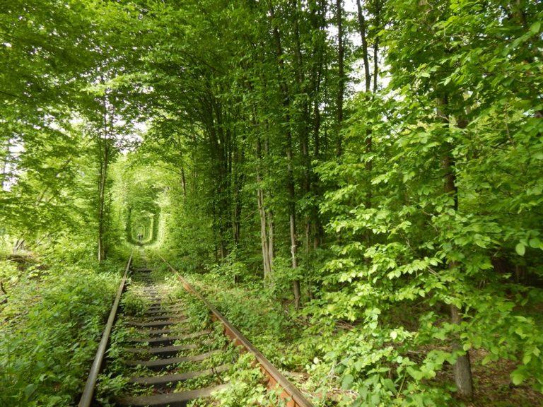 The Tunnel of Love – Ukraine